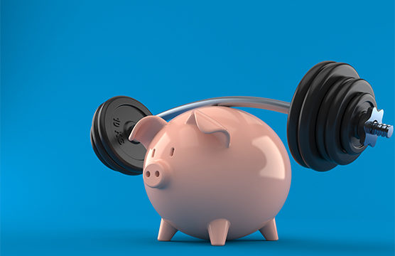 Financial Fitness Pig