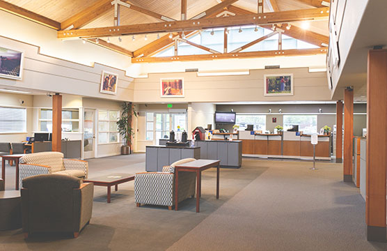 Shelton branch interior