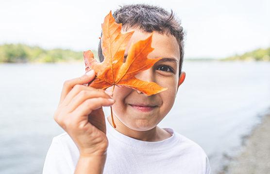 boy holding up colorful maple leaf